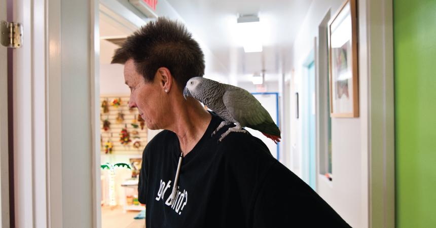 Got bird?
